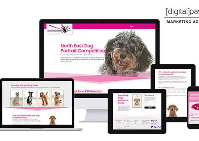 North East Dog Portrait Competition